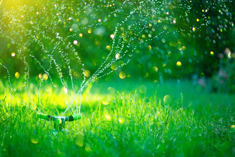 Dlaczego warto zainwestować w automatyczny system nawadniania trawnika?